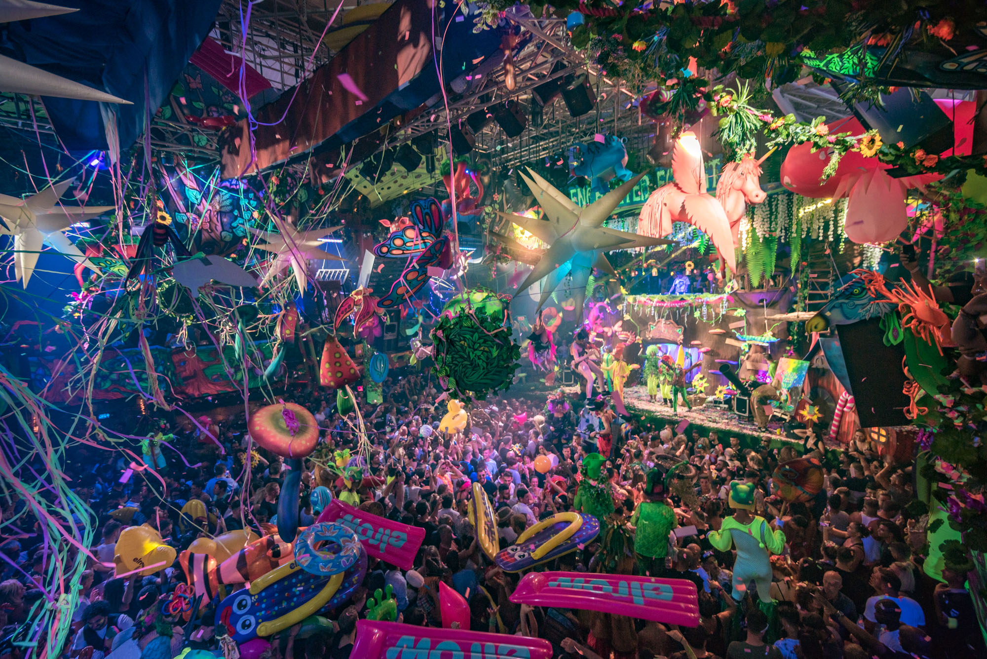 The enchanted Forest Welcome to the wild depths of your ...